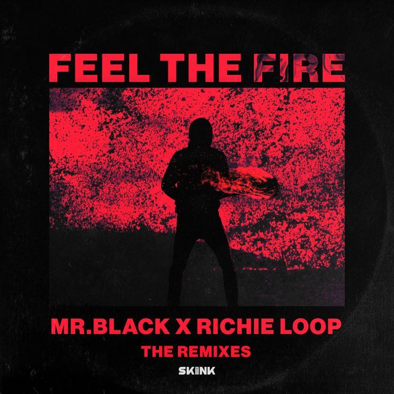 MR.BLACK, Richie Loop, Futuristic Polar Bears & Jerry Davila, Luca Testa, D.N.A. - Feel The Fire ( The Remixes) artwork